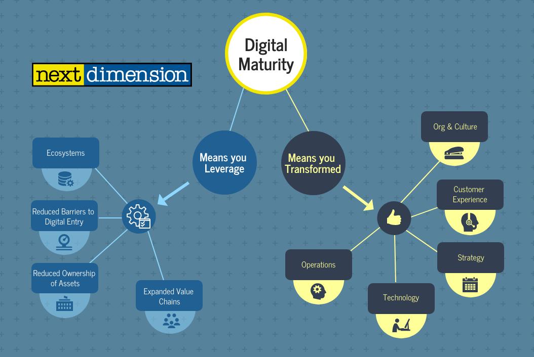 digital maturity snapshot